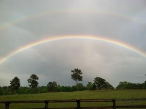kelli rainbow